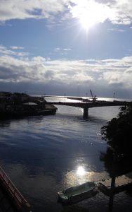 yamakara屋久島事務所からの風景